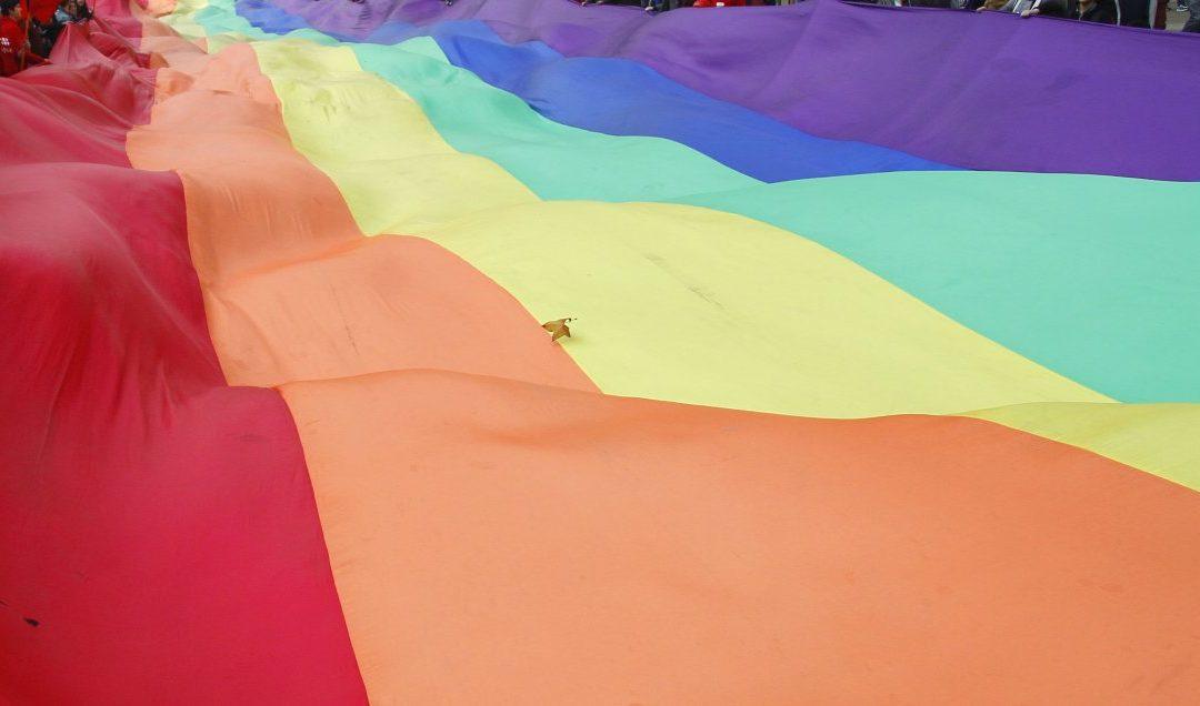 Senado aprobó idea de legislar el matrimonio igualitario