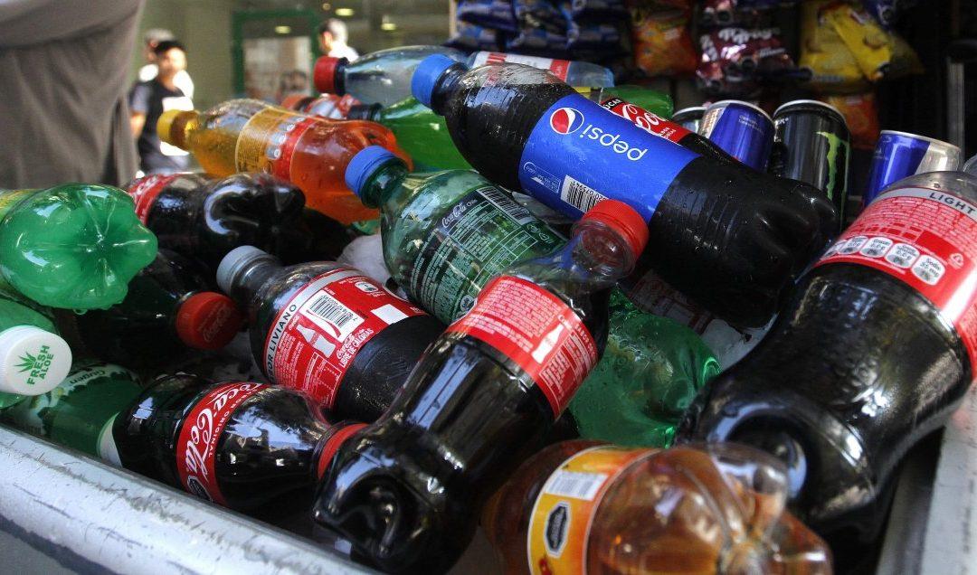 Estudio: Chilenos consumen en promedio 7,1 litros de bebida y 5,3 kilos de pan al mes